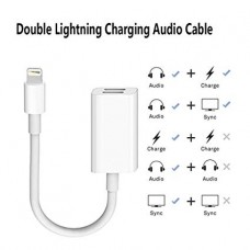 DOUBLE LIGHTNING AUDIO/CHARGING CABLE